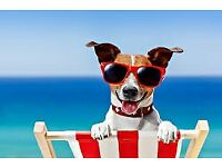 SEPTEMBER BARGAINS IN DEVON & CORNWALL - DOGS WELCOME - BAR - POOL- BEACHES -WALKS - GREAT SEA VIEWS