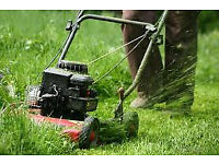 Gardener available hedge triming grass cutting ext gardening services