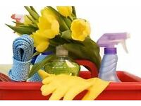 Cleaning and Ironing Services in the Thanet area. Family Run Business