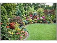 Gardener/Grounds-keeper