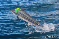 6 NIGHTS 7 DAYS PLUS 3 DAYS OF MARLIN FISHING INCLUDED