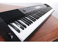 Casio Electric Piano *6 months old*
