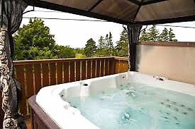 Hot tub and canopy for sale