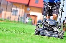 Cheap Quality Lawn Mowing Campbelltown Campbelltown Area Preview