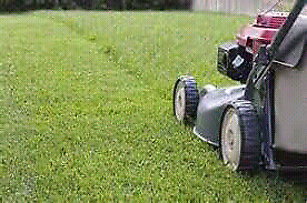 Lawnmower hire