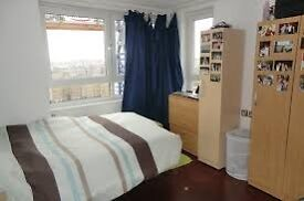 Bright Double room in a friendly flat close to GREENWICH