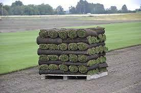 Dirty Larrys Fresh cut Green Home Sod..Free Delivery