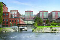 WOW Griffintown Condo a louer IMMED!! 1150/mois