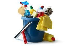 Cleaning services Darling Point Eastern Suburbs Preview