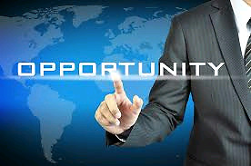 Business Opportunity $25,000.0/