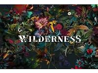 Wilderness festival full weekend 120 each