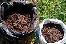 Composted  Chicken and Cow Manure - Perfect for Gardens - Williamtown Port Stephens Area Preview