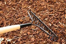 Free Mulch/Bark Chips Oxford Falls Belrose Warringah Area Preview