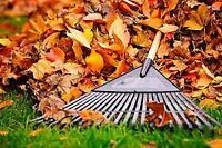 Fall clean-up, Junk removal *Free Quotes*