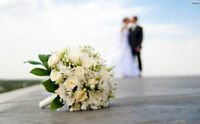 """So you said """"YES"""" & are Planning a Destination Wedding! no fees"""