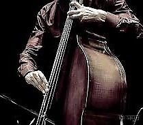 Double-bass player wanted, for signed, moody Alternative / jazz-tinged project
