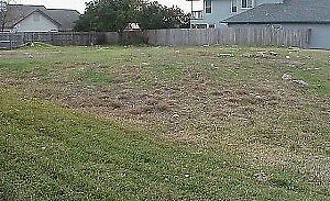 looking for Vacant Lot