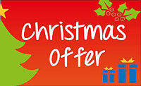 christmas offer ! website , seo , hosting, SSL @ $150