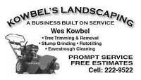 Tree trimming - Removal & Stump Grinding