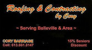 For all your roofing needs Belleville Belleville Area image 1