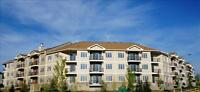 Modern 1 & 1+den suites at Beacon Heights Apartments!