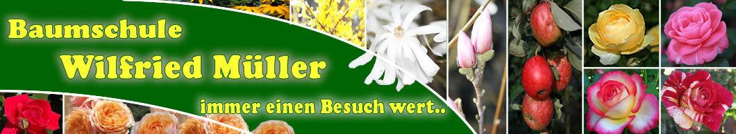 Baumschule Wilfried Müller