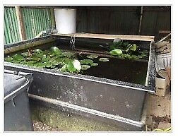 Quarantine tank/hospital pond tank