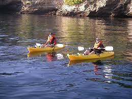 !!!!!!KAYAKS FOR RENT!!!!!!   $49 for a day  8' and 10' kayaks Sarnia Sarnia Area image 4