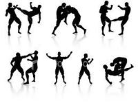 Personal trainer MMA fitness training