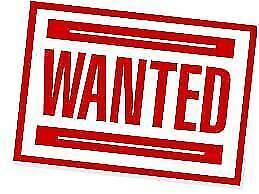 Wanted: EXCAVATORS LOADERS DOZERS SKID STEERS BOBCAT KUBOTA YANMAR CAT Rathmines Lake Macquarie Area Preview