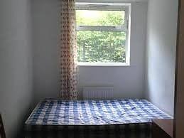 Sunny, quiet double room in Clapham