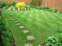 decking tree cutting lawn mowing hedge trim fence house painting, shed removal,clearance waste