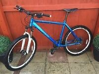 Carrera Bike Blue