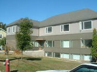 One Bedroom Across From St.FX In Antigonish. Available May1!