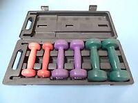 V Fit hand weights in carry case