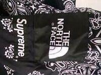 Men's Supreme x North Face Jacket. (Size Large)