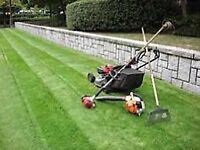 Lawn cutting service in peel region