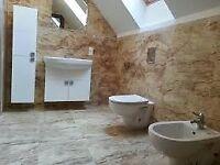 Professional Polish Builders 07806693184