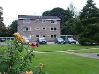 1 Bedroom Flat, Norton, Sheffield, Quiet Area, Close to Amenities and Park