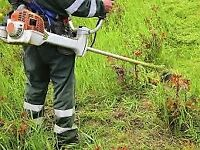 Grass cutting ,rubbish removal per black bags £1.50