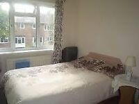 1 very large bedroom 2 bathrooms all inc