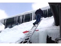 Snow / Ice removal / Tree removal. Flexible Rates. 5062920140.