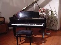 piano teacher at home for children and adult