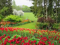 all garden works under takeing