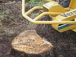 Affordable Tree Stump Removal Service