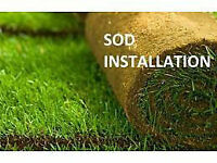 **SEASON END SPECIAL** SOD 80 CENTS SQFT INCLUDING INSTALL