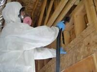 Mold Removal Vancouver provide right thing in every situation