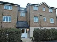 WANTED - 2 Bedroom Flat To Purchase In Braintree, Essex