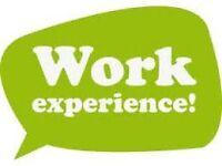 2 weeks unpaid work experience