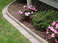 Spring Clean up time! Curb Appeal! Hedges! Pressure Wash! More!